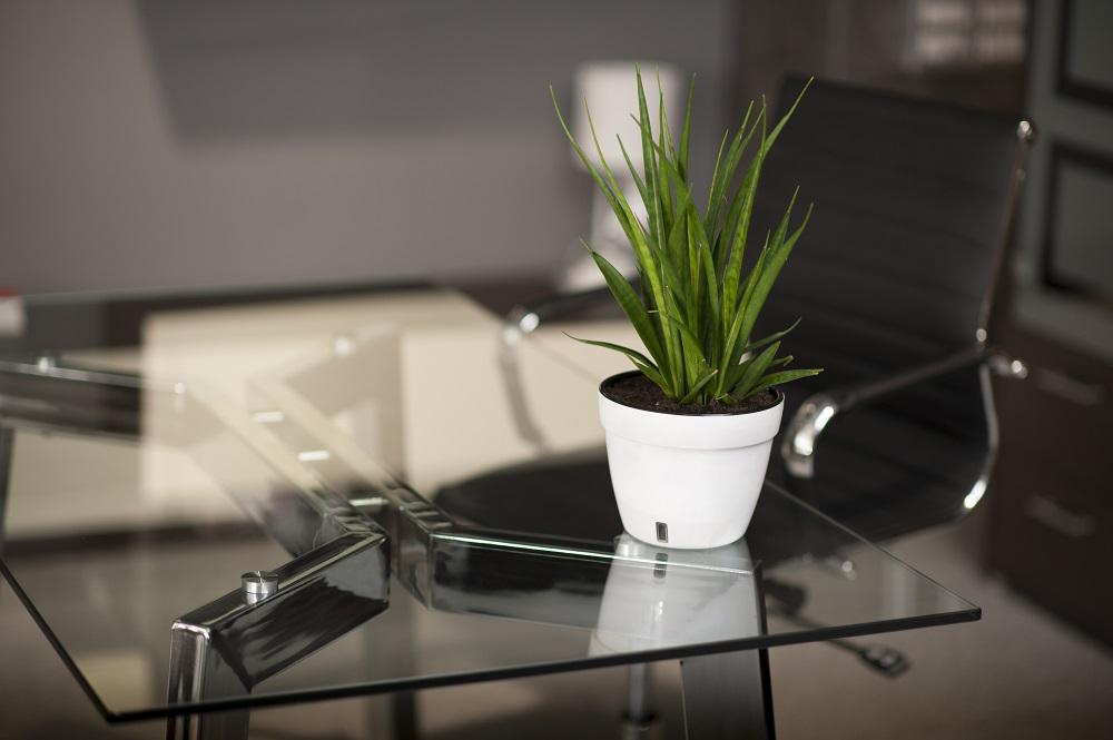 Stolik biurowy kwiatem